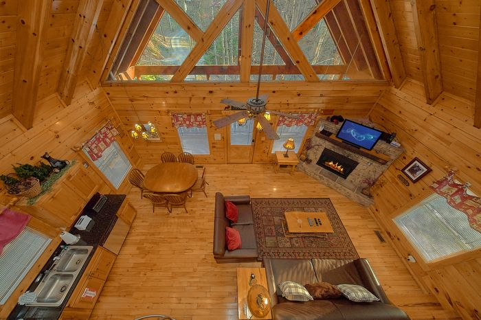 Cabin with Open Floor Plan - A Bear Encounter