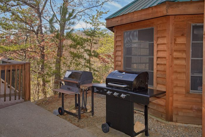 Gas and Charcoal Grills 5 Bedroom Cabin - A View For All Seasons
