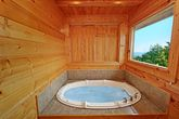 Jacuzzi Tub with Views