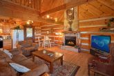 Spacious 1 Bedroom Cabin Sleeps 6