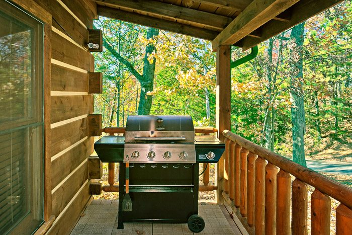 Cabin with a Grill - Amazing View