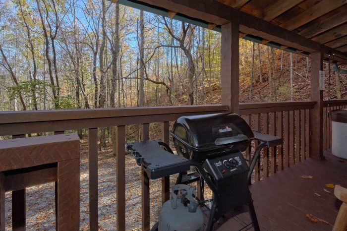 Gas Grill 1 Bedroom Cabin Sleeps 4 - Bare Tubbin