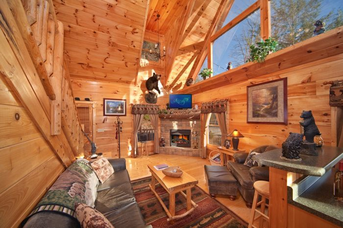 Gatlinburg Cabin with Living Room - Bear Footin In The Smokies