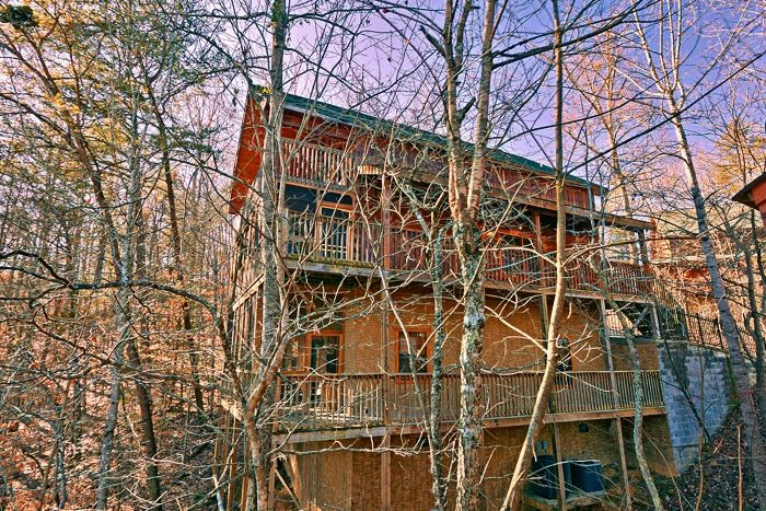 Cabin with Wooded View - Bear-E-Nice