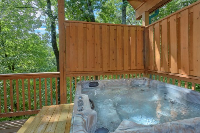 Private Hot Tub 1 Bedroom Cabin Sleeps 6 - Bear'ly Makin' It