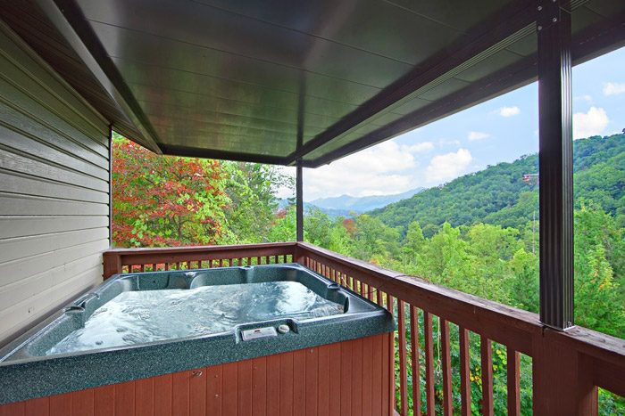 Great Views of the Smokies from Hot Tub - Big Bears Den