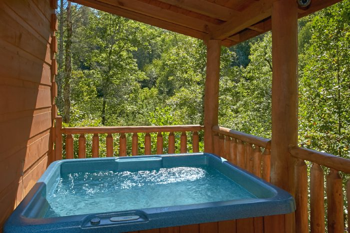 Luxury Cabin with Theater Room and Hot Tub - Can't Bear To Leave