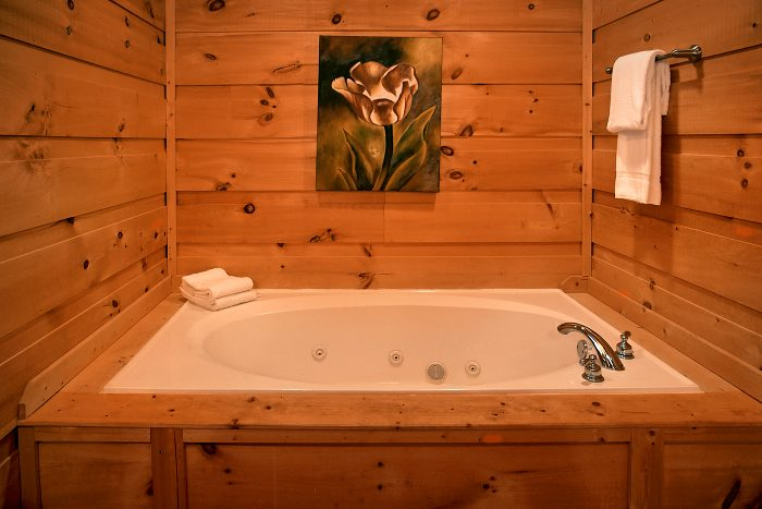 5 Bedroom Cabin with Jacuzzi Tub and Bath - Crown Jewel