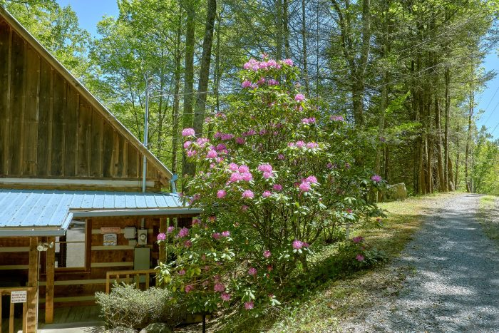 Smoky Mountain Cabin with a picnic table - Cuddle Creek Cabin