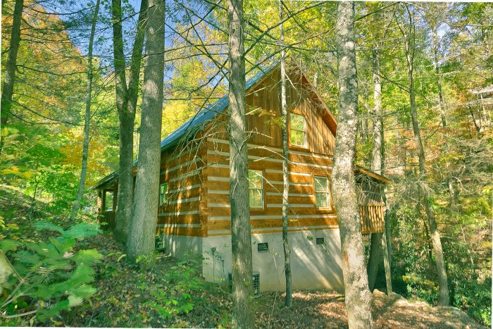 Private 1 Bedroom Cabin in the Smoky Mountains - Cuddle Creek Cabin