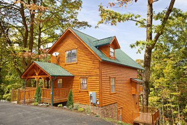 rentals and forge friendly cabins tn pigeon in gatlinburg cabin exterior pet