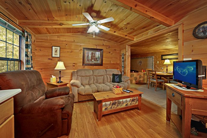 One Level Cabin with Living Room - Heavenly Dreams