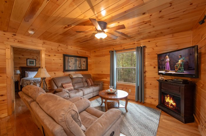 Cabin with Luxurious Living Room - Hickory Splash