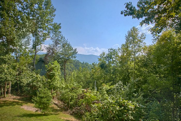 Private 2 Bedroom Cabin with Mountain Views - Huckleberry Haven