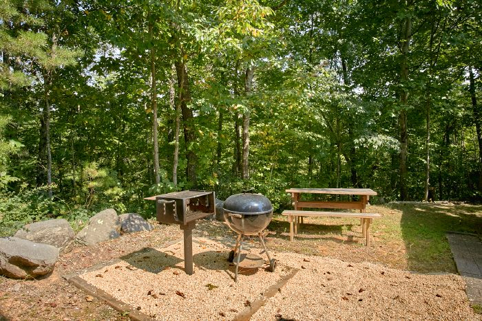 Cabin with grill, picnic table, Hot Tub and View - Huckleberry Haven