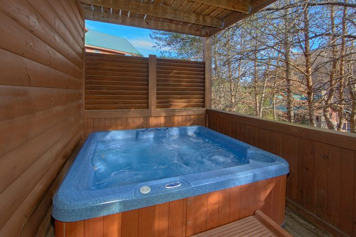 2 Bedroom Cabin with Hot Tub - Lil Cajun Cabin