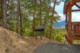 4 Bedroom Cabin Sleeps 10 with Breathtaking View