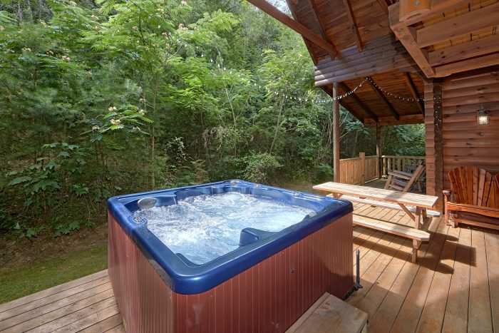 Smoky Mountain Cabin with a Private Wooded View - Mountain Valley Dreams