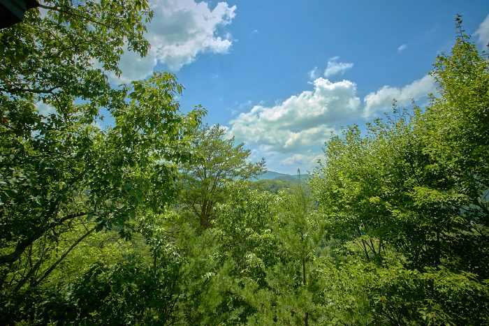 2 Bedroom Cabin with Views and Deck - Mtn Memories- Kimbles