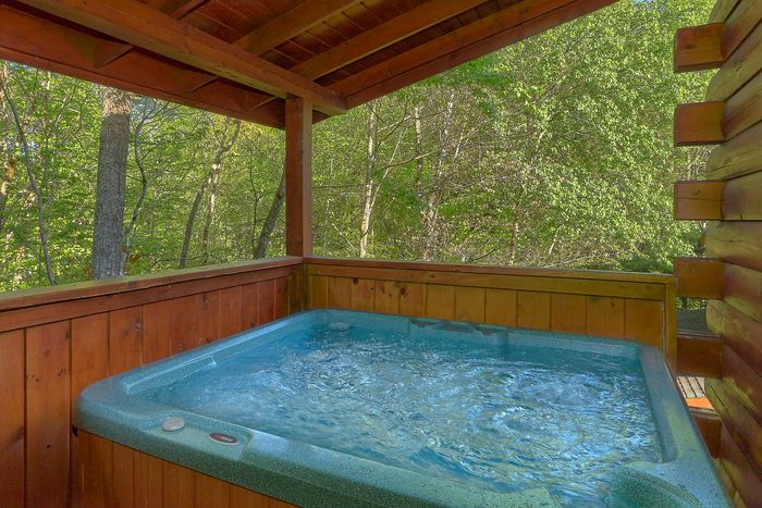 Cabin with Rocking Chairs - Paws A While