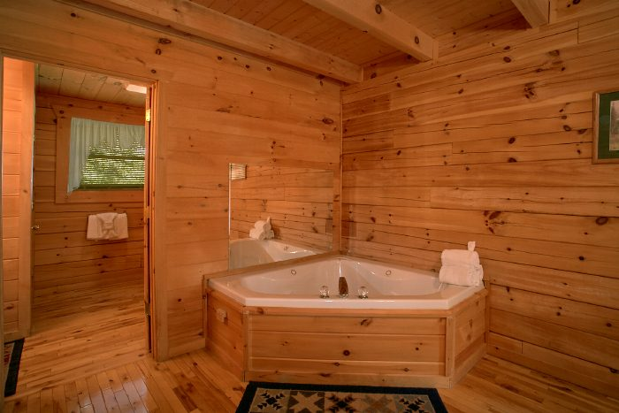 Secluded 1 Bedroom Cabin with Jacuzzi Tub - Peek A View