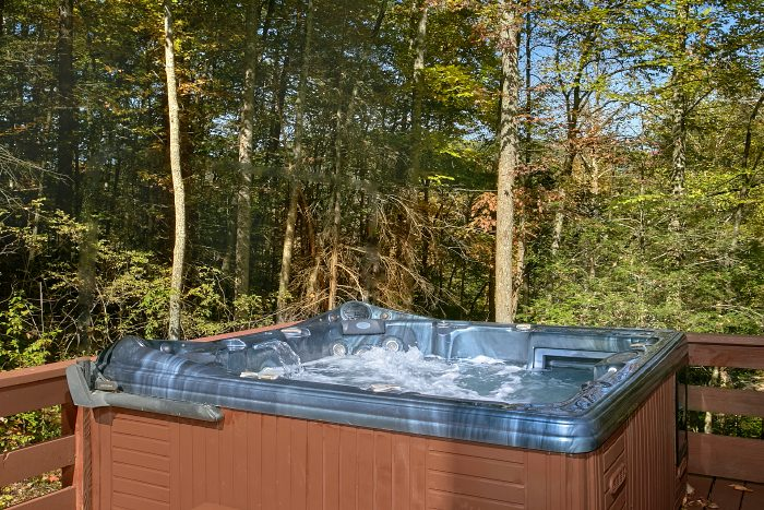 Private 4 bedroom Cabin with Hot Tub on Deck - Ponderosa