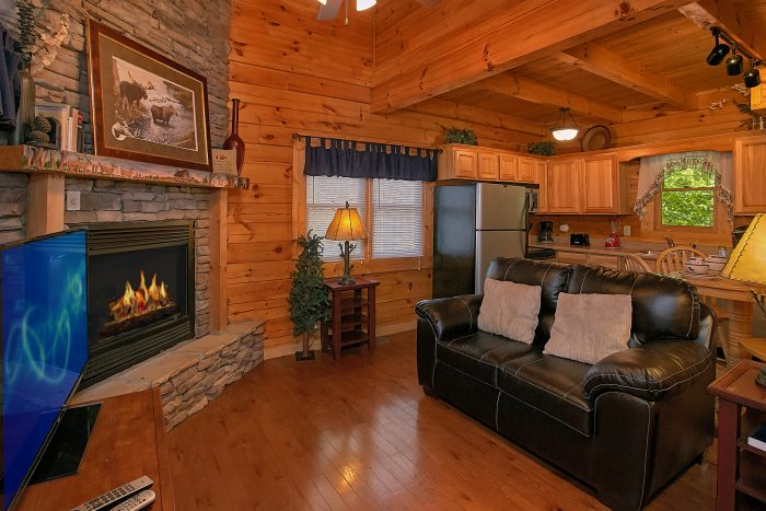 Premium 2 bedroom cabin with Fireplace - Reclusive Moose