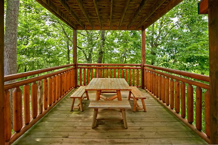 Cabin with picnic table on covered deck - Shoot the Moon