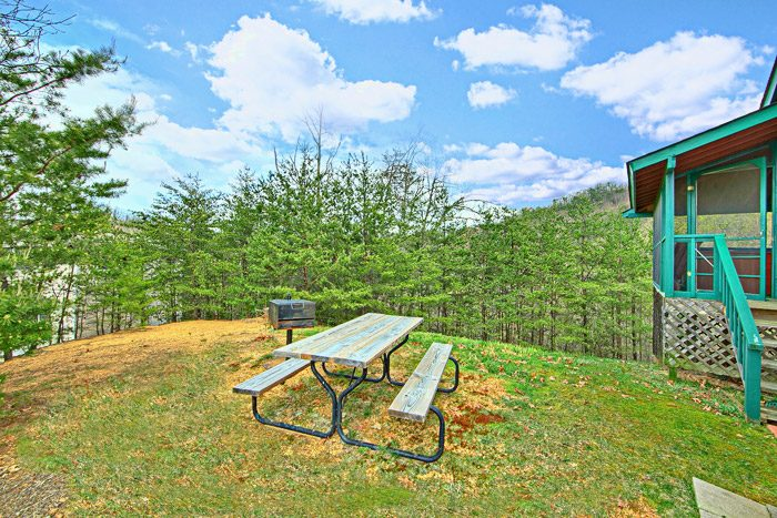 Cabin with Picnic Table - Sleepy Ridge
