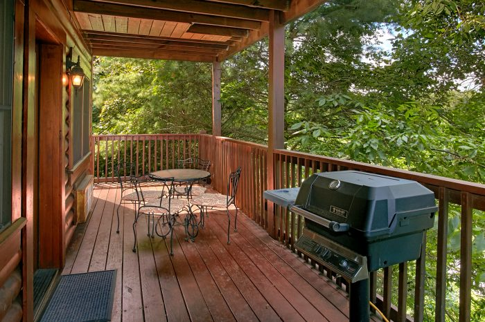 2 bedroom cabin with gas grill on covered deck - Southern Deluxe