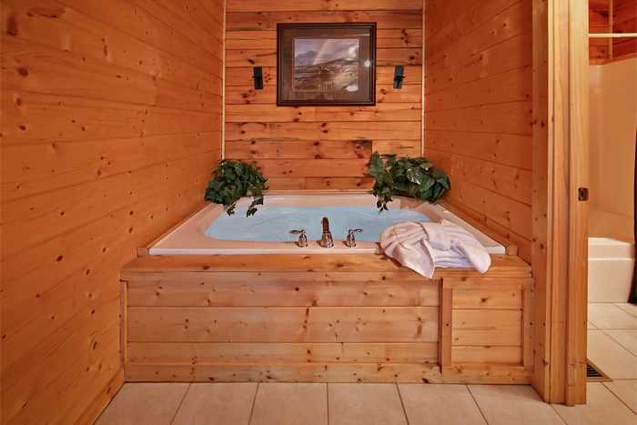 2 Bedroom Cabin with 2 Indoor Jacuzzi Tubs - Sparkling Dreams