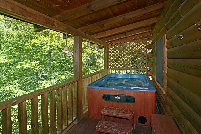 Hot Tub with Wooded View - Spirit of the Valley