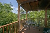 Wooded Views from Cabin