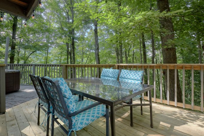 Gatlinburg Outdoor Eating Space - The Birds Nest
