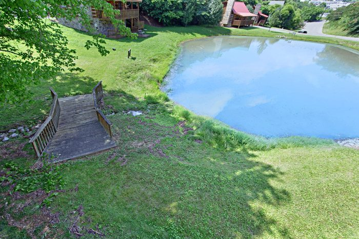 Cabin with View of Pond - Tucked Away