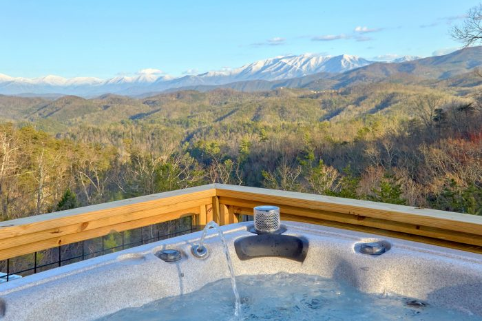 Luxury Cabin with Private Hot Tub and View - Bluff Mountain Lodge