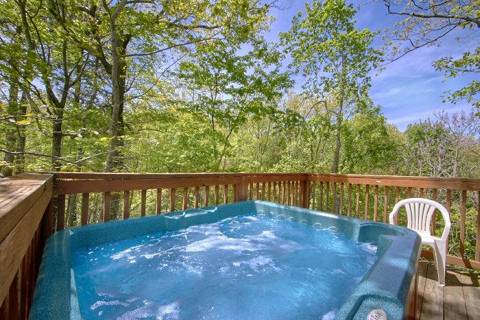 Premium 1 Bedroom Cabin with Hot Tub - Wild Kingdom